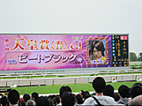 20120429028