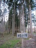 20151107047